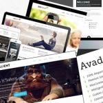 elegir un buen theme para WordPress