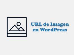 Obtener URL del Enlace de Imagen en WordPress