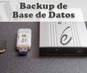 Crear un Backup de la Base de Datos en WordPress