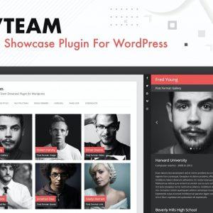DVTeam Team Showcase Plugin for Wordpress